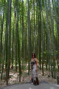 bambu13