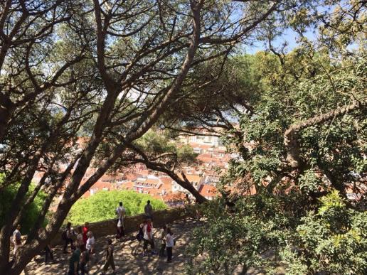 Castelo de São Jorge11