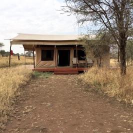 Acacia Central Camp1
