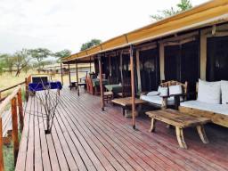 Acacia Central Camp12