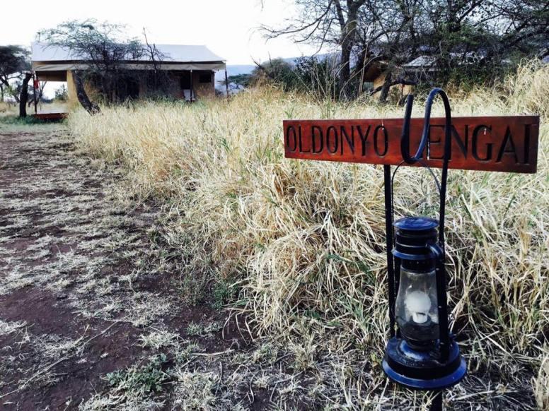 Acacia Central Camp23