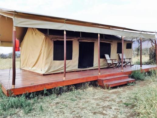 Acacia Central Camp26