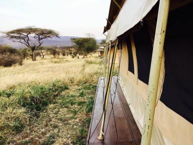 Acacia Central Camp27