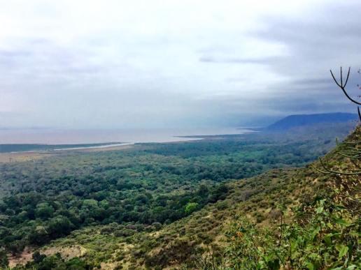 Lake Manyara 14