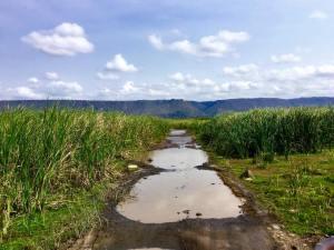 Lake Manyara 7