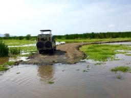 Lake Manyara 8