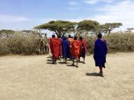Maasai 16