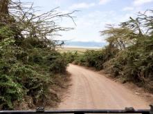 Ngorongoro10