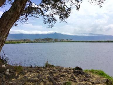 Ngorongoro13
