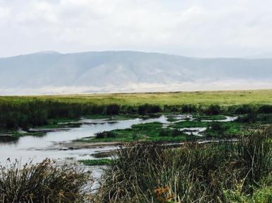 Ngorongoro15
