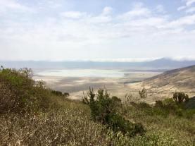 Ngorongoro6