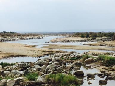 Serengeti North1