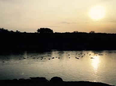 Serengeti North16