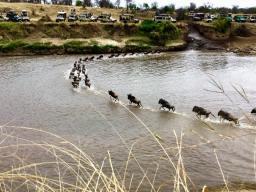 Serengeti North6