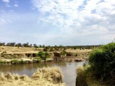 Serengeti North7