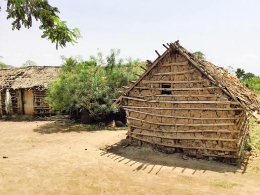 Village in Tanzania6