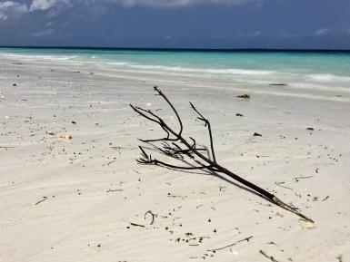 praia 17
